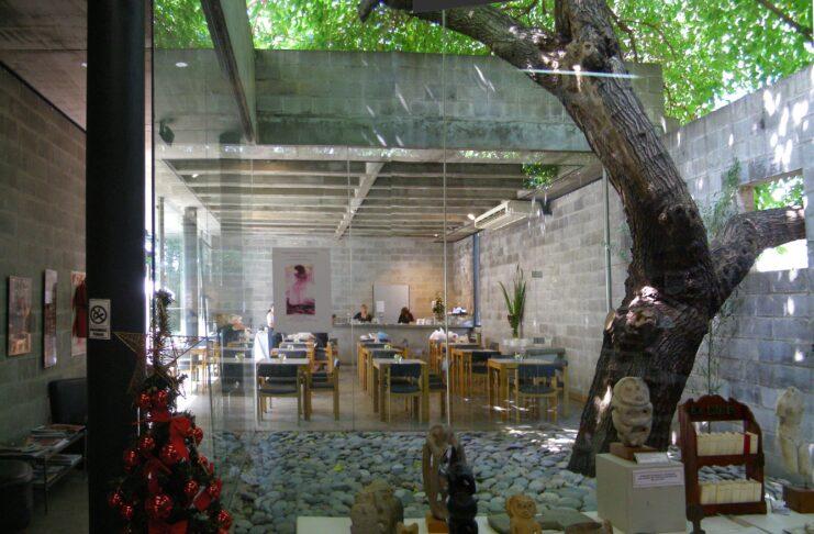 Musée Sivori, de la roseraie au bon goût