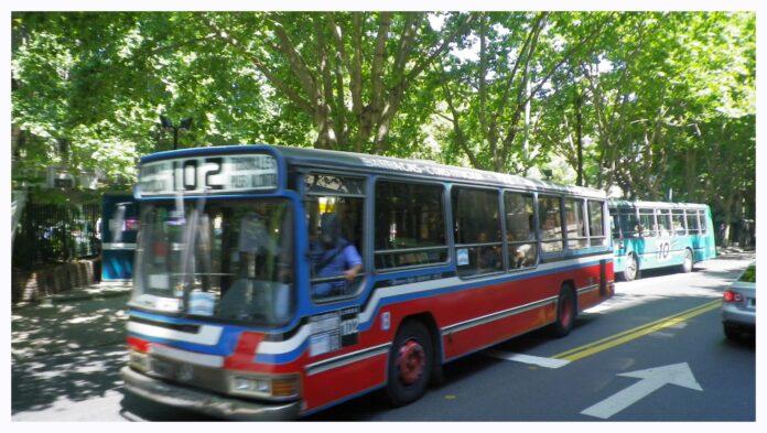 Colectivos ou bondis, prenez le bus sans paniquer !