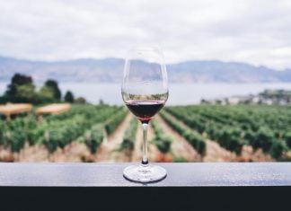 vino argentina uruguay