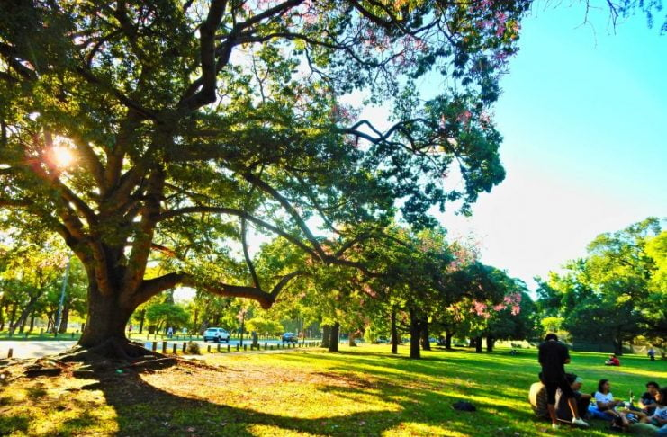 Picnic Buenos Aires
