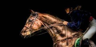 equitación buenos aires